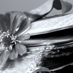 Libro-con-fiore-1024x420